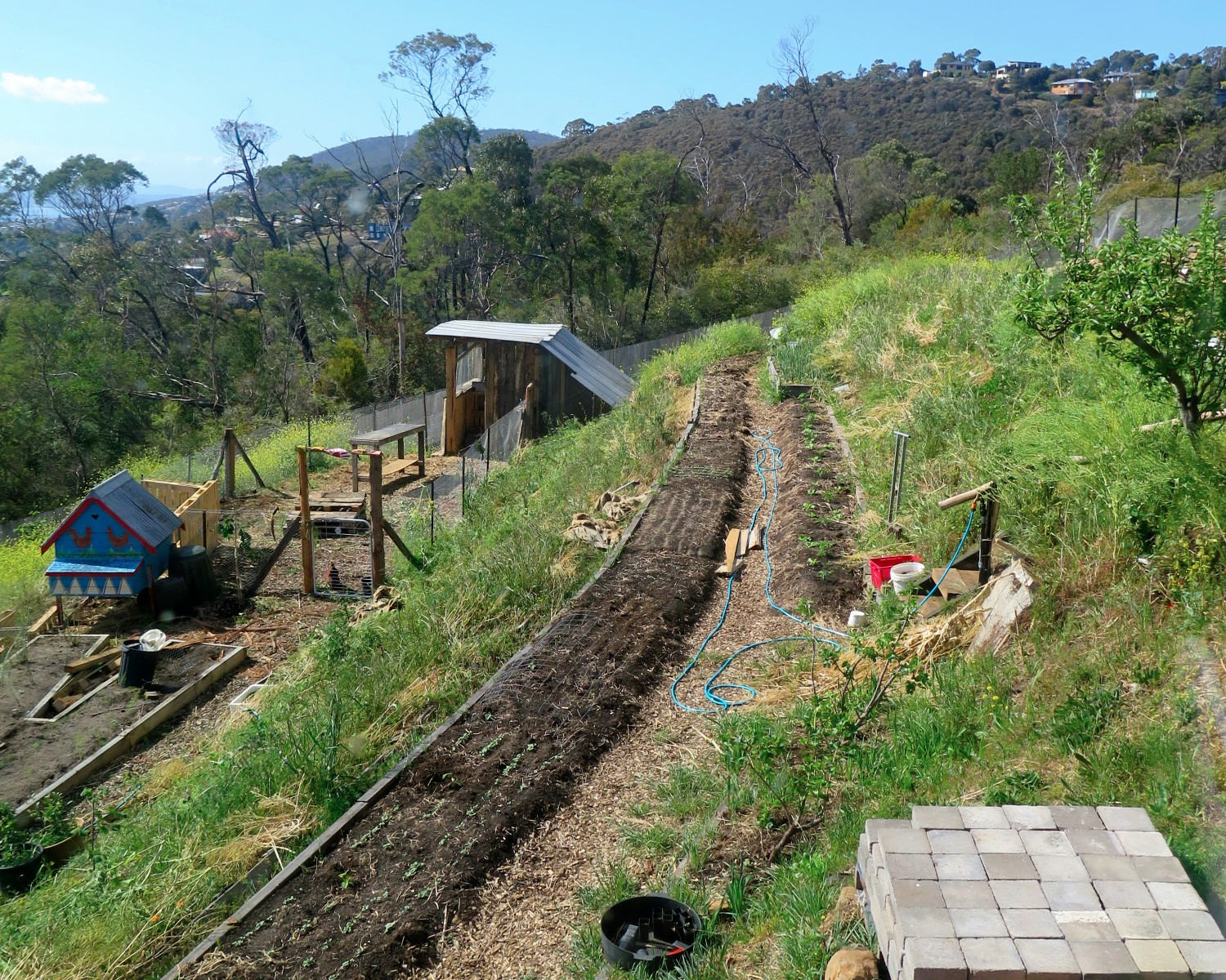 How To Landscape A Steep Slope | Good Life Permaculture