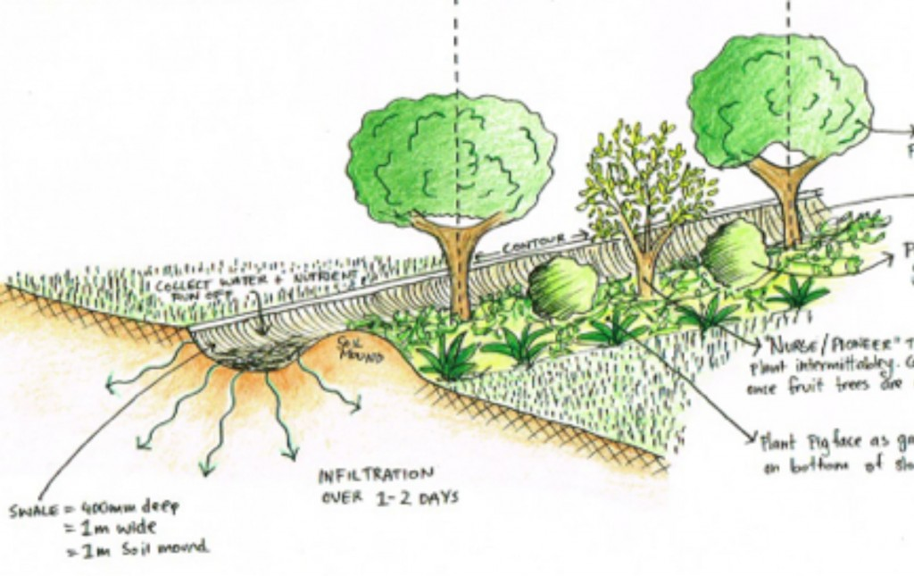 Swale Pathways Good Life Permaculture