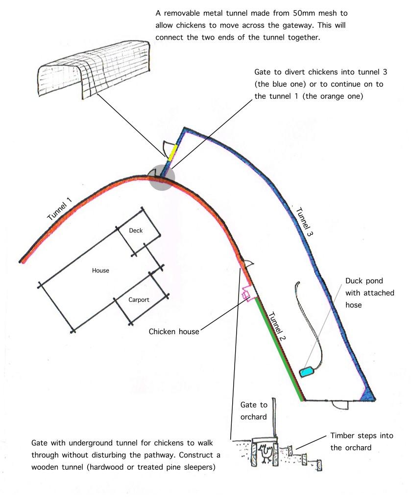 Chook tunnel system